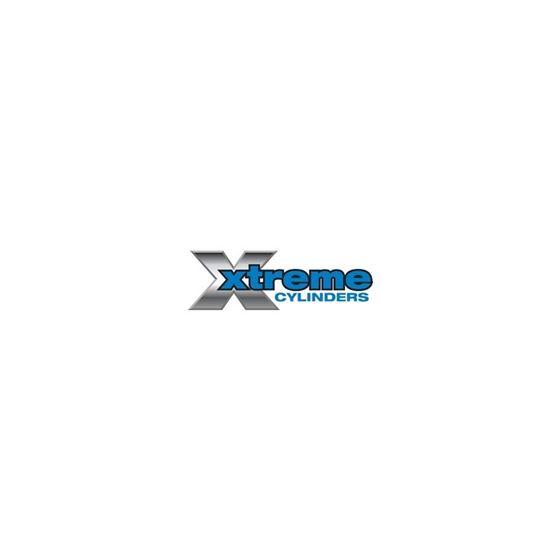 Hydraulic Cylinder 73-4500-118